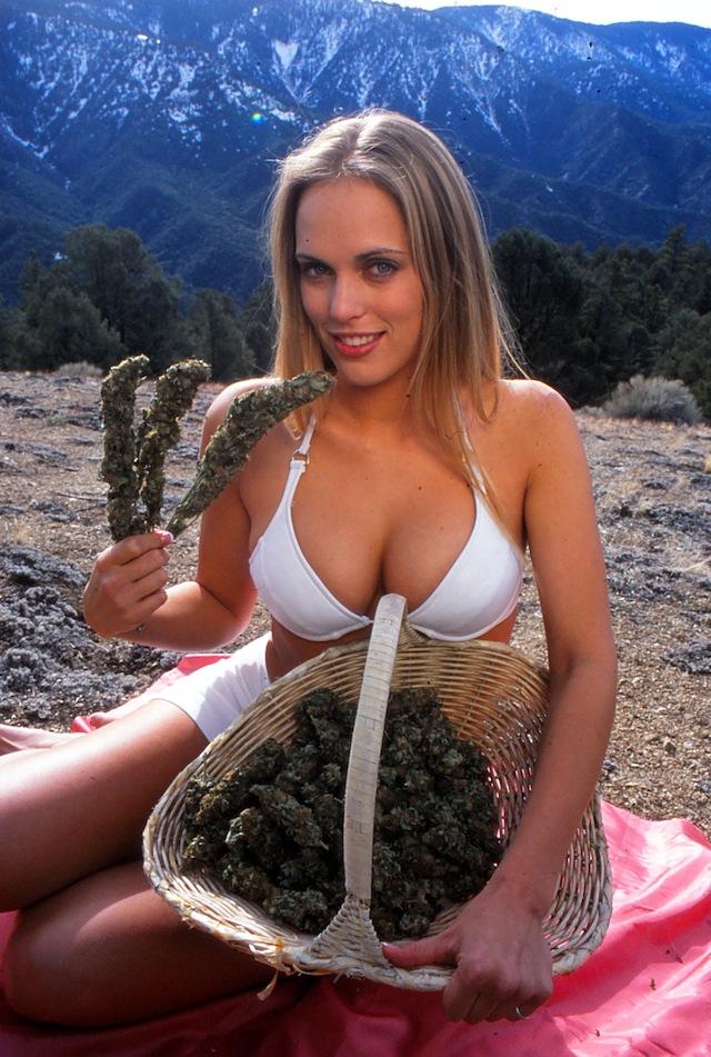 Фото голых девушек с коноплей сортовые семена конопли