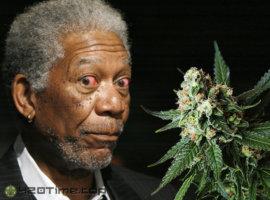 Морган Фримен и марихуана