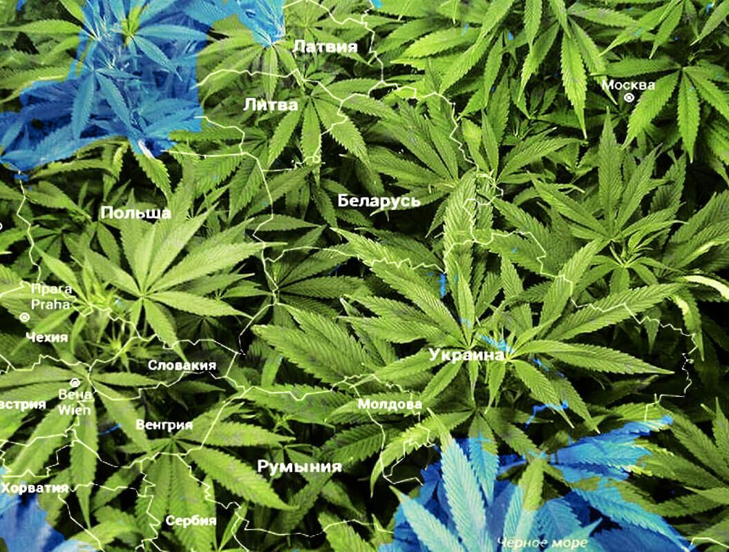 Статус марихуаны в странах Восточной Европы