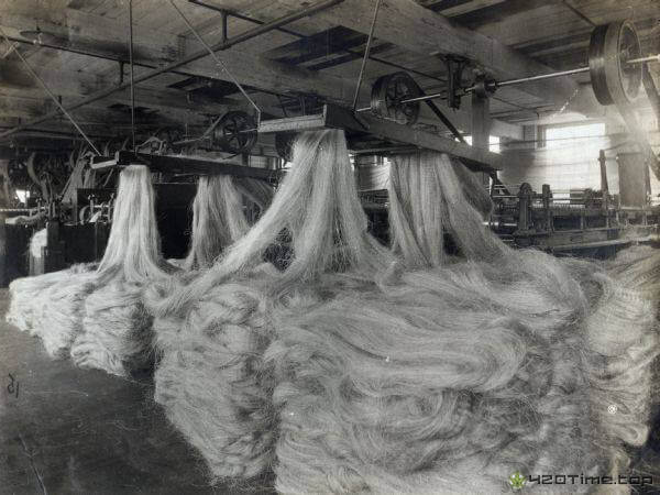 Конопляная промышленность в США 1930 годов