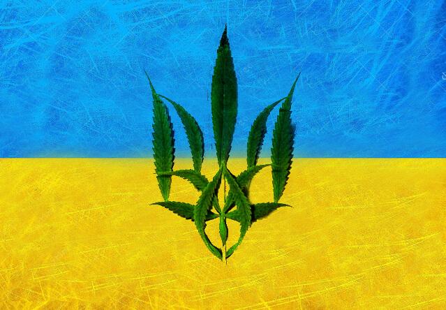 легализация марихуаны в украине