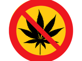 история запрета марихуаны