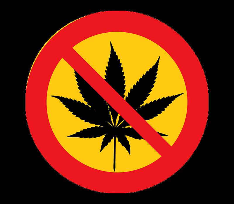 Запрет марихуаны в сша конопляное семя для кормления