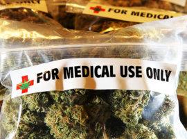 В Украине легализуют медицинскую коноплю