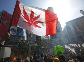 Марихуана Канада легалайз