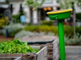 автоматизированный полив растений
