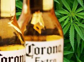 алкоголь и трава