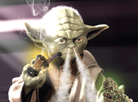 25 цитат великих людей о марихуанне
