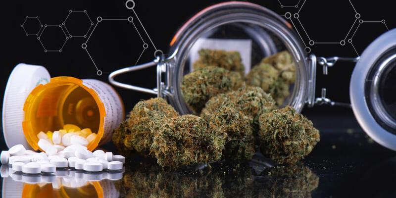 Марихуана поможет победить опиоидную зависимость