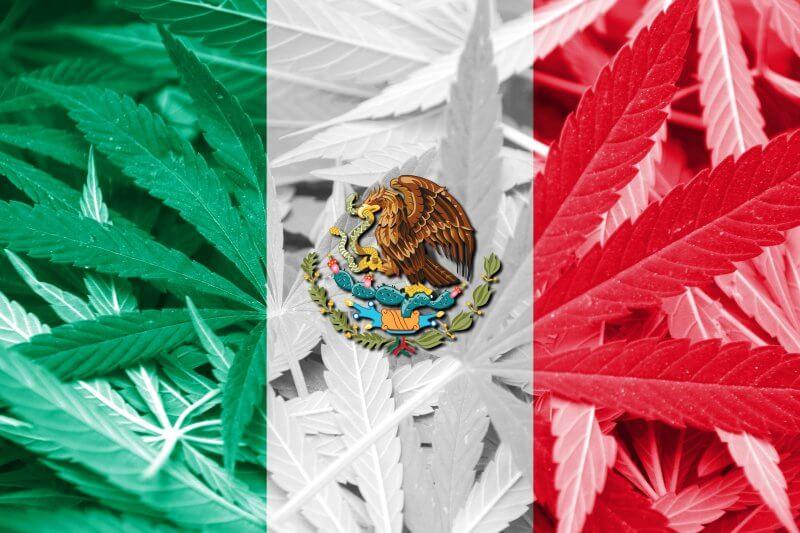 Мексиканцы едут в США за травкой