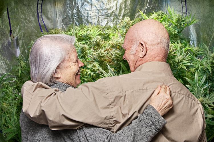 Марихуана становится популярнее среди пенсионеров