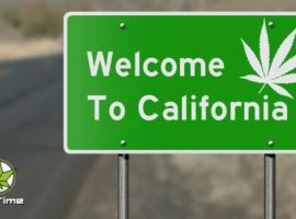 Власти Калифорнии поддерат малый конопляный бизнес