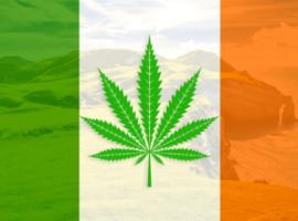 В Ирландии продают травку почти без ТГК