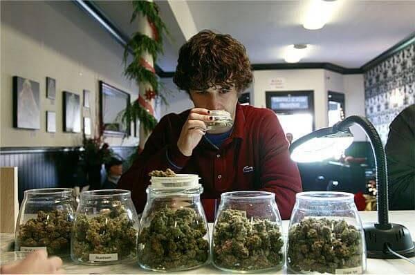 Запах марихуаны