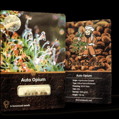 auto opium Дивайн Сидс