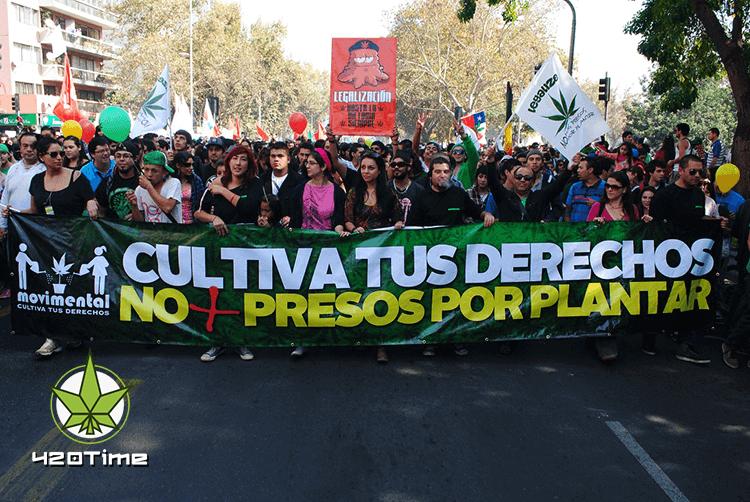 Частичная легализация марихуаны в Чили