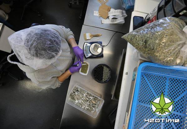 Ученые исследуют медицинские свойста КБД