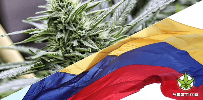 Колумбийская марихуана