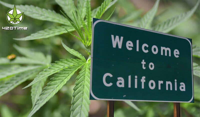 Легализация марихуаны в Калифорнии