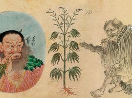 Доказательство употребления каннабиса в древнем Китае