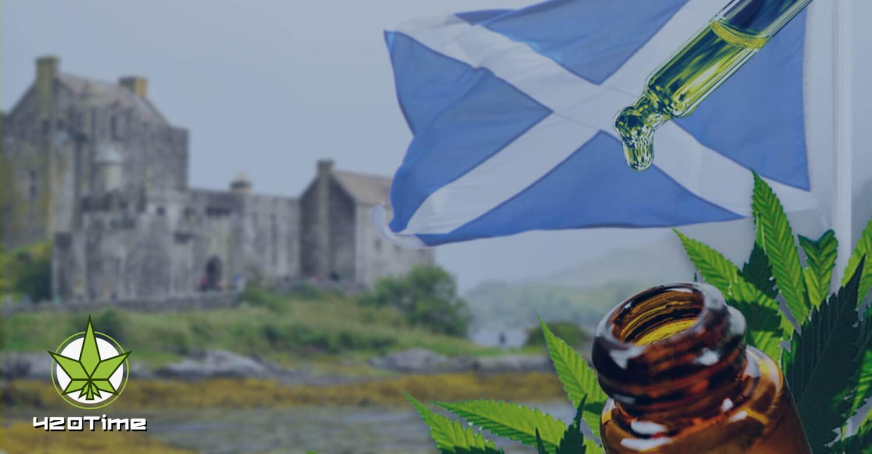 Первая ферма с коноплей в Шотландии