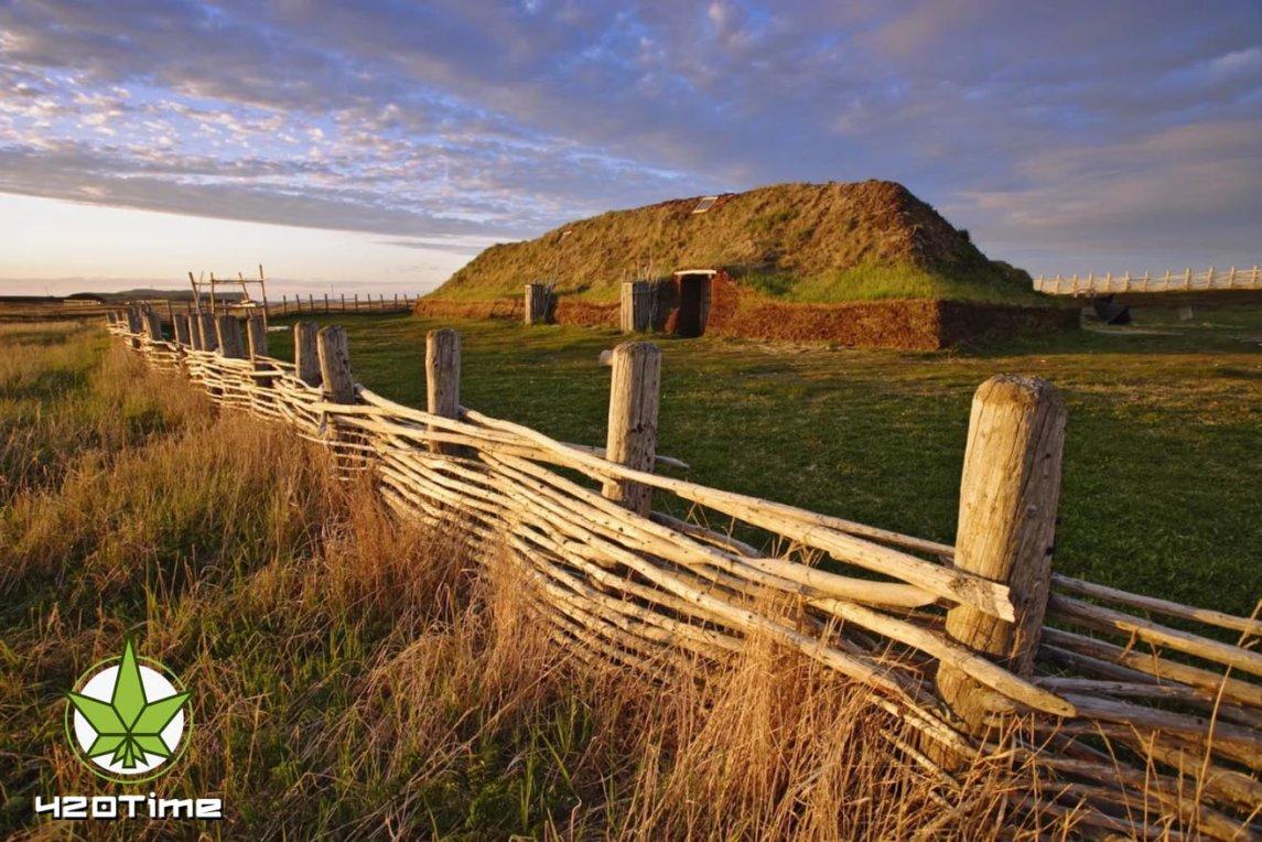 Что курили викинги