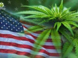 Причины торможения легализации марихуаны