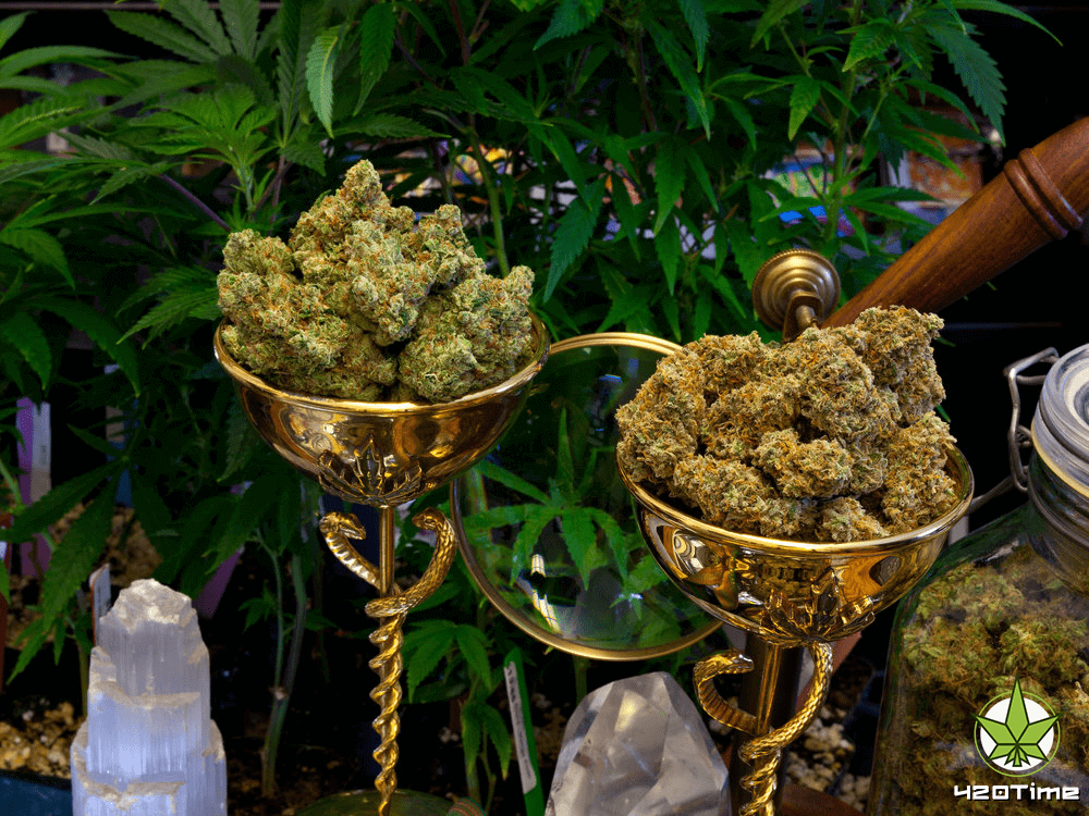 Миллениалы предпочитают курение марихуаны