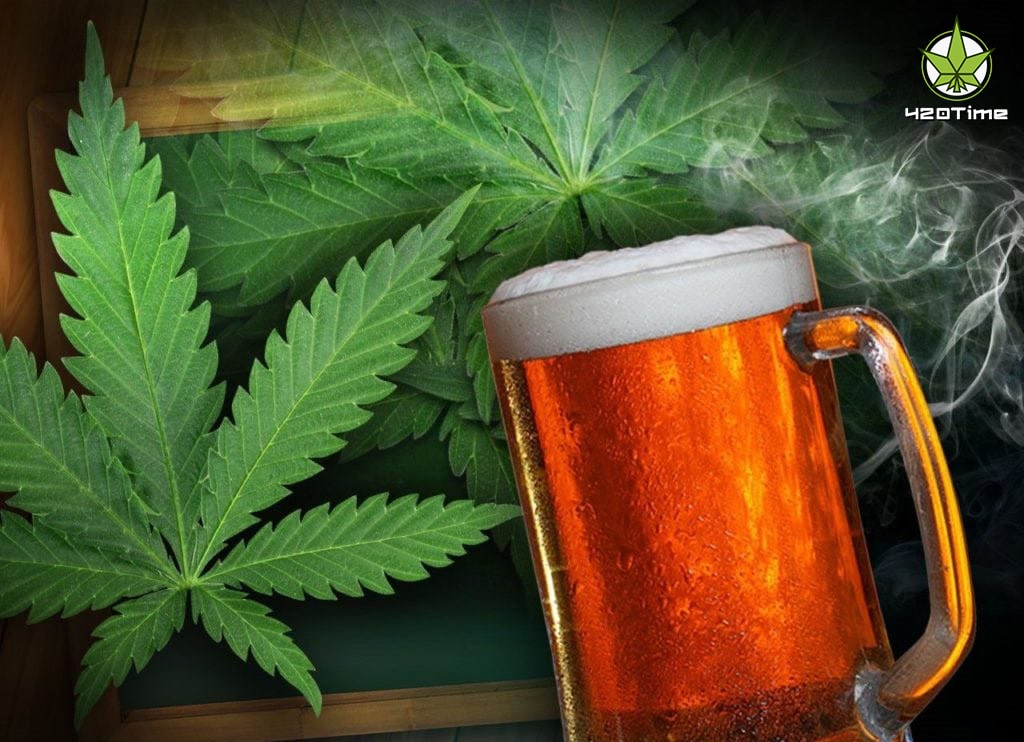 Пиво до и после курения марихуаны
