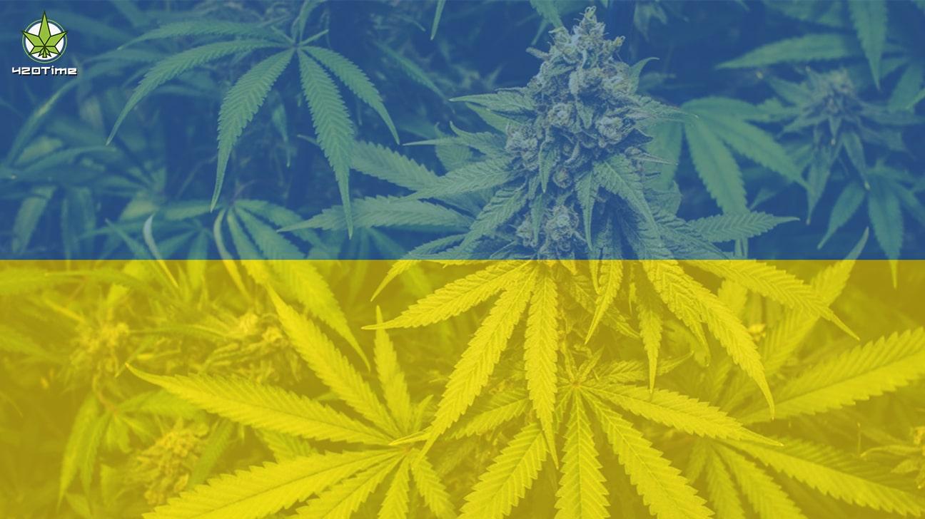 Легализация конопли в Украине