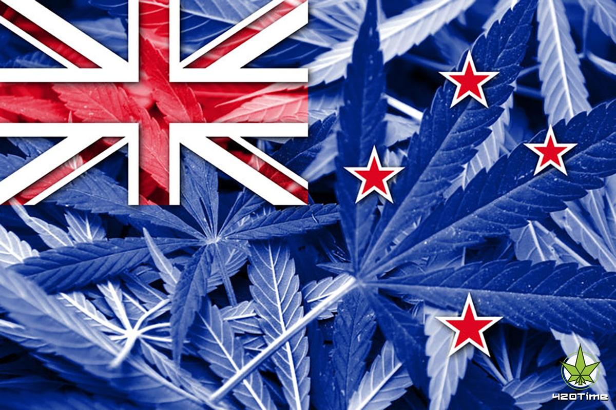 Почему Новая Зеландия должна легализовать марихуану
