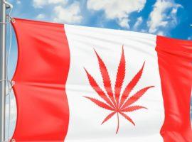 3 этап легалайза в Канаде