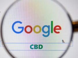 Пользователи гуглят кбд чаще чем йогу и иглоукалывание