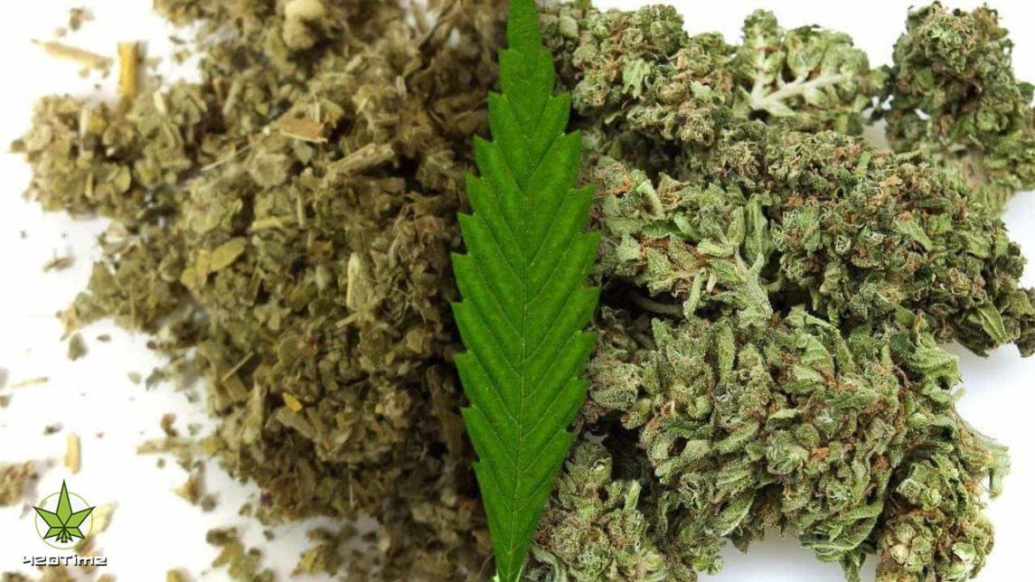 Кайф от марихуаны и специи