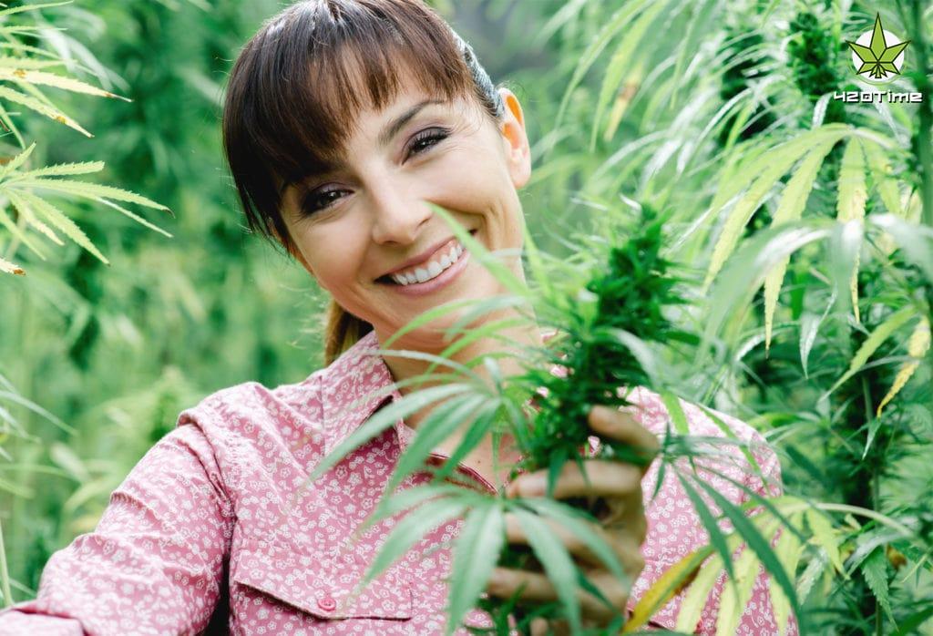 Лечение гинекологических заболеваний с помощью марихуаны