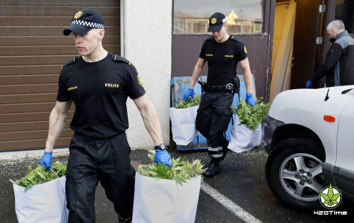 Конопляное образование Green Flower Media для полиции