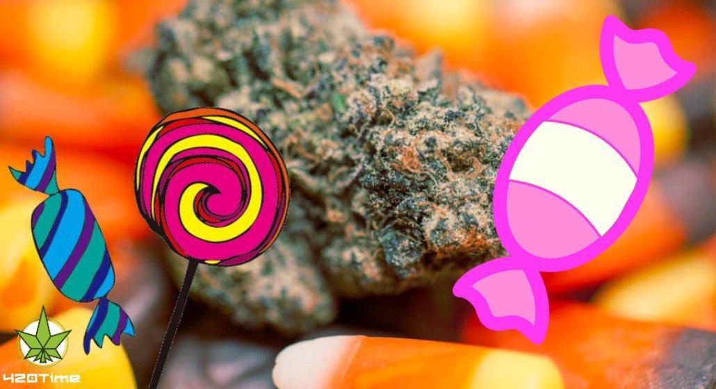 рецепт конфет с марихуаной